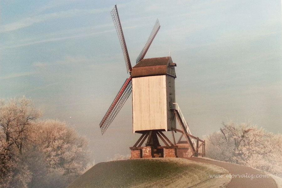 Brugge tanıştığım fotoğrafçı Andy McSweeney tarafından çekilmiş değirmen fotoğrafı