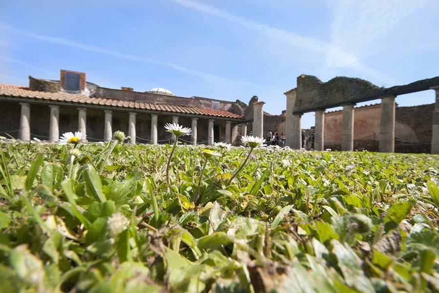 pompei-italya